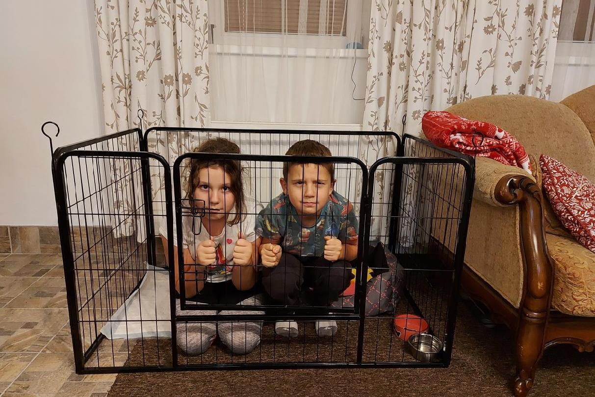 Novinka: Připojte se k živému webináři o rodině a vztazích